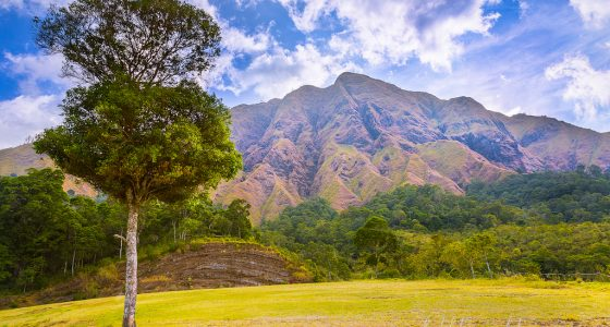 Rinjani climb package for group