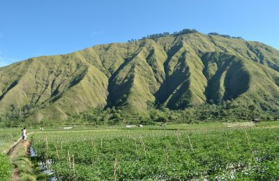 Rinjani Trekking Lombok Tour